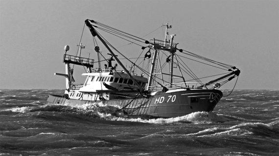Van der Lee Seafish achète un bateau de pêche